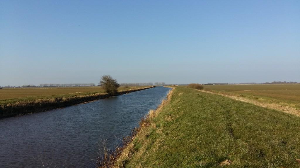 Ecologische advisering inrichtingsprojecten Hertogswetering (aa en Maas)