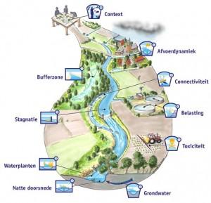 Ecologische Sleutelfactoren voor stromende wateren